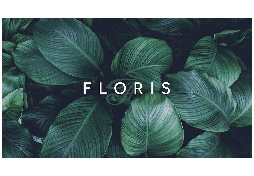 FLORIS Grundriss-Navigator