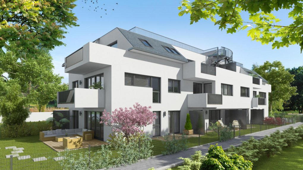 3D Visualisierungen Immobilienprojekt Himberg